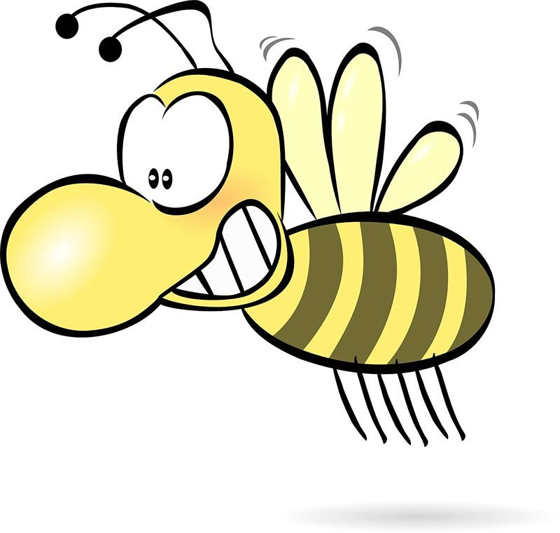 The bee that annoyed Julia? Well we think it was a mozzie... but she told us we were wrong!