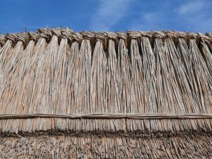 Thatched roof in Hungary. Image by Zyance