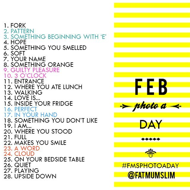 Fat Mum Slim's February Photo A Day