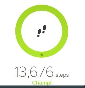 As I write this I have done 13,676 steps.