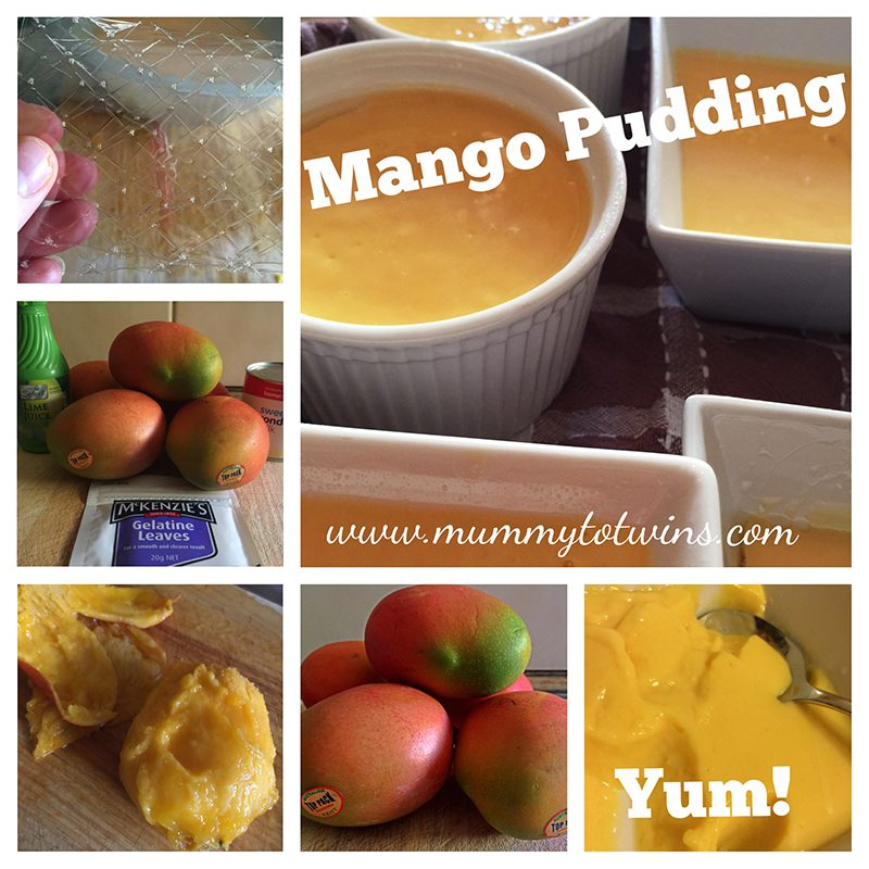 MangoPudding2_blog