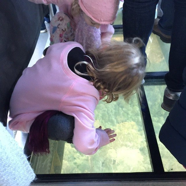 The kids on the glass floor in the skyway. It is opaque and then becomes clear.