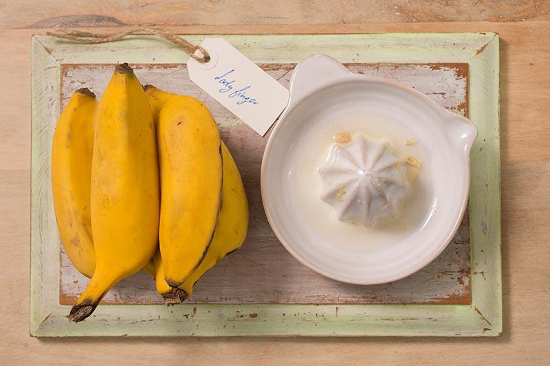 LadyFinger Bananas