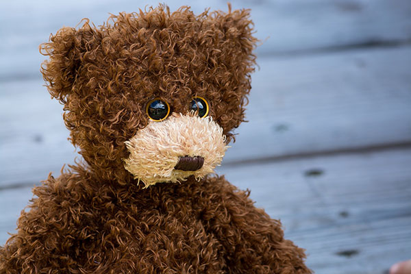 Make sure your kids have their special teddy with them. It will make them feel good that they know where it is, plus it will comfort them to cuddle it when they want to.