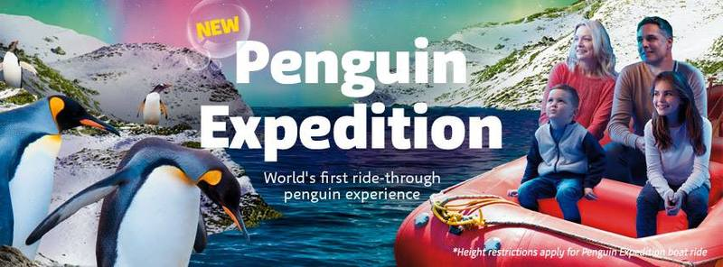 Come and experience the Penguin Expedition at SEA LIFE Sydney Aquarium.