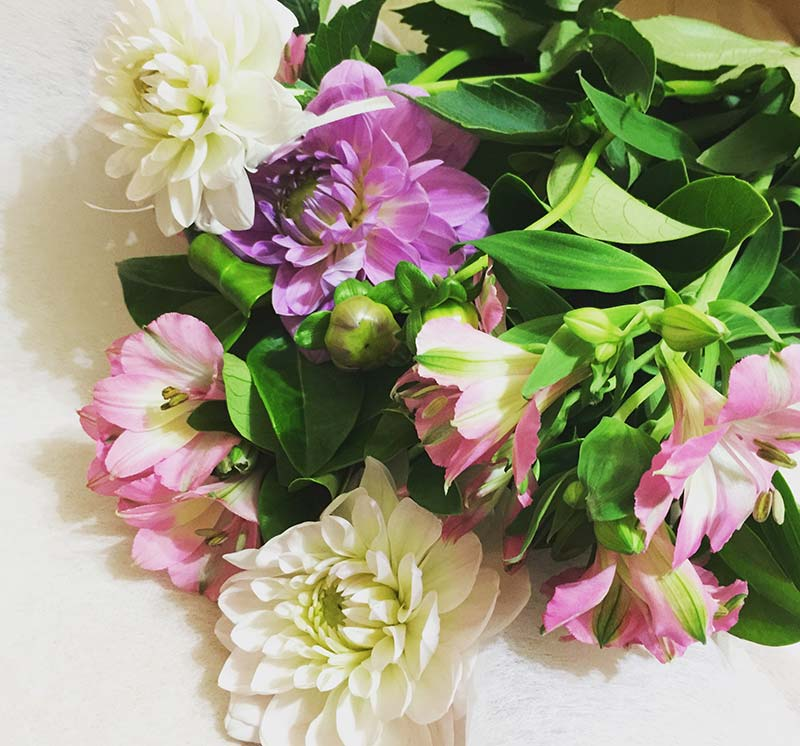 My lovely bunch of Dahlias and Alstroemeria that I purchased from Pam and Debbie at Fine Flowers. These look so pretty and put a big smile on my face.