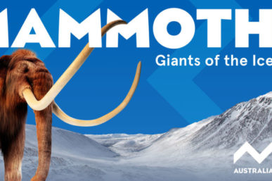 See Mammoths the Giants of the Ice Age