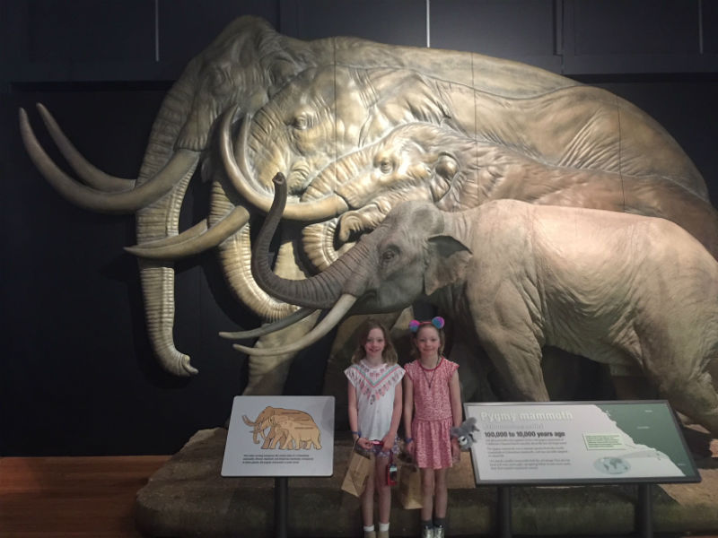 The girls are small as well next to these mammoths. Check out how tall you would be next to these huge animals.