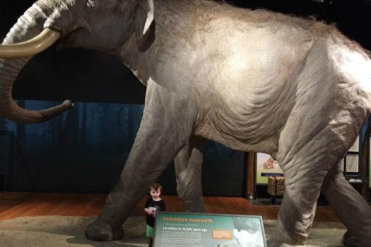 Win 2 Family Passes to The Australian Museum