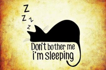 Can You Catch Up On Sleep?