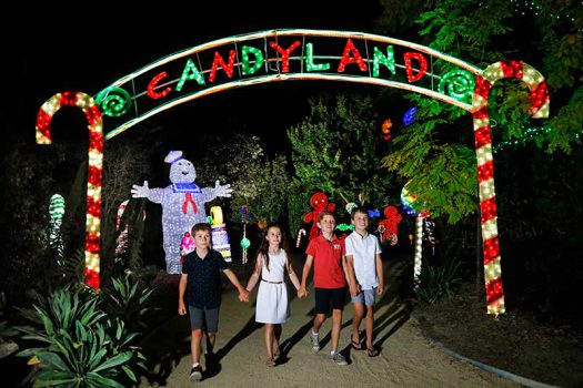 Win A Family Pass to the Christmas Lights Spectacular