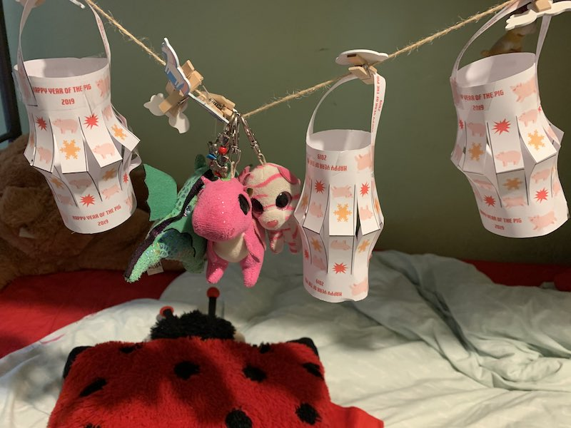 Year of the Pig Chinese Lanterns. The girls have added the lanterns to their room, don't they look fab!