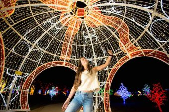 Win 2 Family Passes to Christmas Lights Spectacular