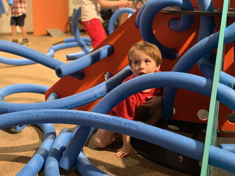 Free creative noodle play at the Opera House.