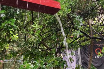 Non-Stop Rain Creates Chaos
