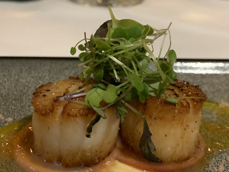 Scallops served with a Lemon Gel, Radish, Spiced Mayo on an Orange & Ginger Sauce